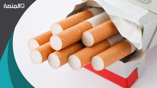 كم سعر كروز الدخان في السعوديه