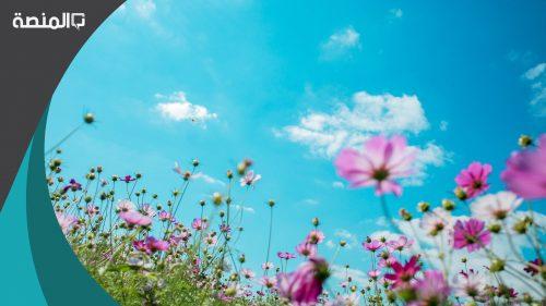 تفسير حلم رؤية الربيع في المنام