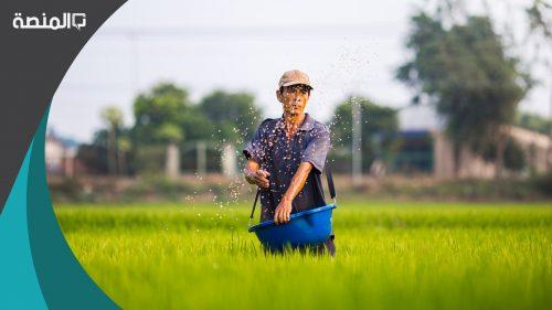 تفسير رؤية حلم الحصاد والزرع في المنام