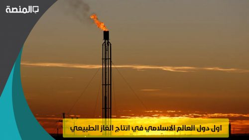 اول دول العالم الاسلامي في انتاج الغاز الطبيعي