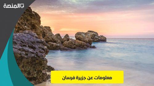 معلومات عن جزيرة فرسان
