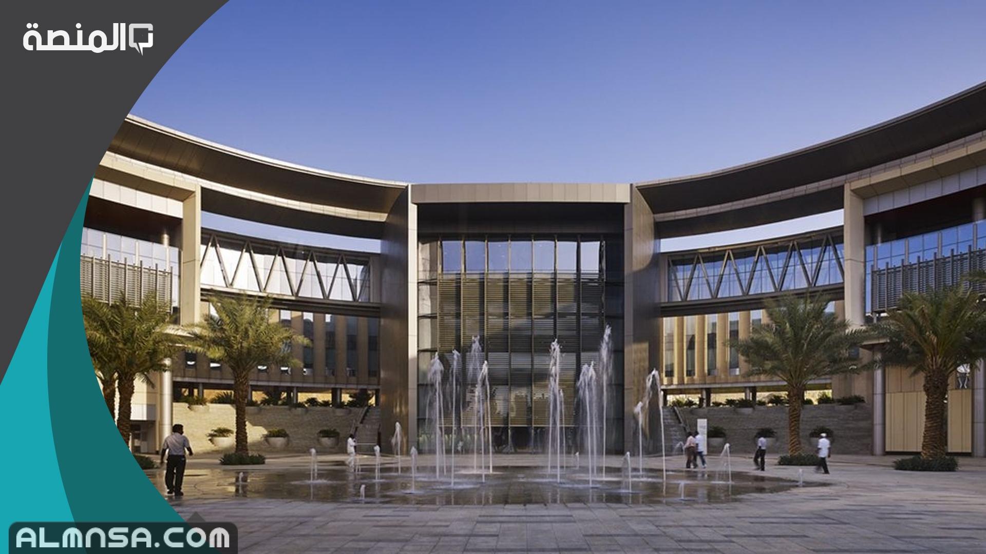 تخصصات جامعة الملك سعود للبنات 1442 المنصة