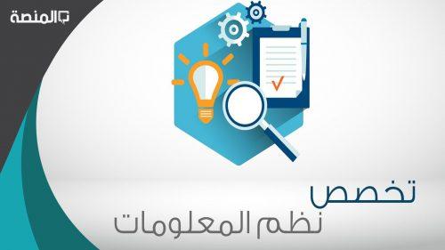 ما هو تخصص نظم المعلومات